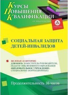 Социальная защита детей-инвалидов (16 ч.)