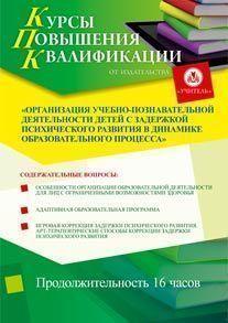 Организация учебно-познавательной деятельности детей с задержкой психического развития в динамике образовательного процесса (16 часов)