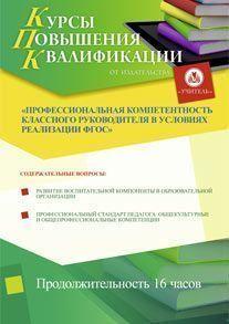 Профессиональная компетентность классного руководителя в условиях реализации ФГОС ООО (16 часов)