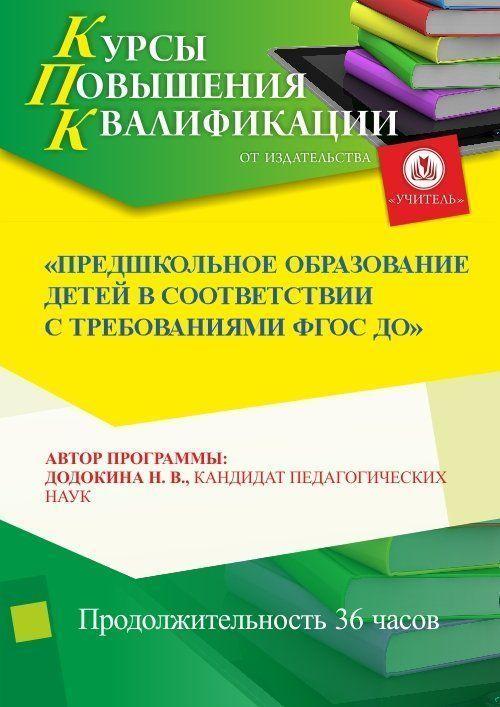 Предшкольное образование детей в соответствии с ФГОС ДО (36 ч.) фото